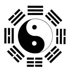 Yin Yang Ba Gua symbol